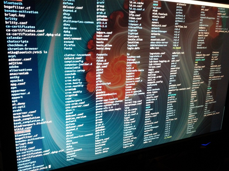 workstation linux shell