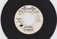 the-ostrich-lou-reed-primitives